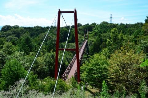 渡るのにリスクの高い吊橋